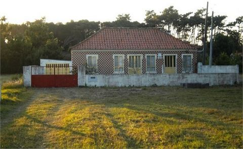 The owners intend to sell the entire property, consisting of 3 articles, 2 rustic, one being composed of the ground and the other side of the Ria terrain of the coastal road to the pine forest, there is a third article, urban, consisting of a one-sto...