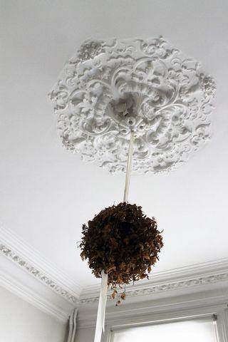 DOUAI Centre ville, Manor house 12 Room (s) 300 m², 6 Bedrooms.