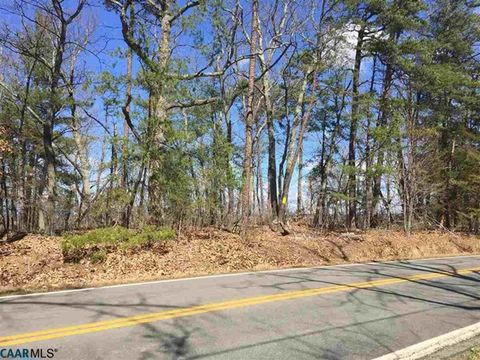Four acres of pristine beauty. Mixed hardwoods and evergreens with elevated level section, sloping downhill to stream at the back. Ideal building site with breathtaking views of the Blue Ridge. Minutes from Barboursville, Horton and Reynard Florence ...