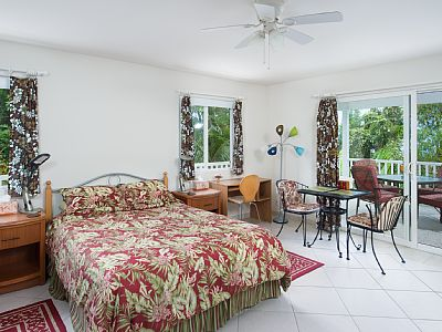 This lovely, tiled, spacious (300 sq. ft.) studio with large covered lanai and tropical garden view is one of several studios in our Guest House. Wake up in the morning to birds singing and pick papayas from your lanai.
