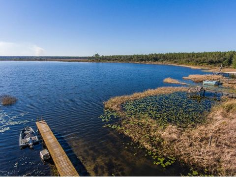 Historic views include oaks w/swaying moss in the wind, crystal clear skies sprinkled w/afternoon showers during summer months, and pristine water. Camp Newbern is located on East shore of 1,300-acre Lake Delancy with a reputation of trophy bass. Cam...
