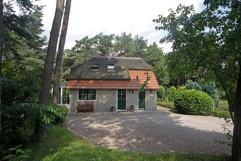 This lovely holiday home is in characteristic Beerze. You can completely relax on the private terrace while surrounded by woods and nature. You can bring the outdoors inside by opening the French doors to the terrace. You can wander from the garden s...